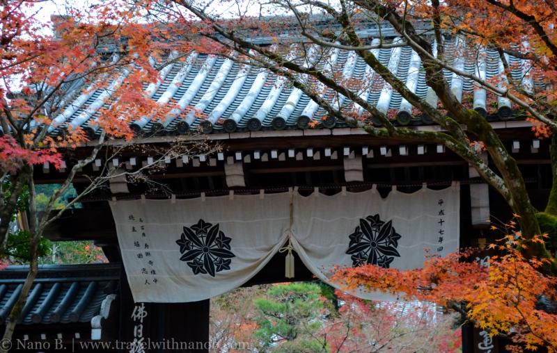 kyoto-autumn-leaves-19