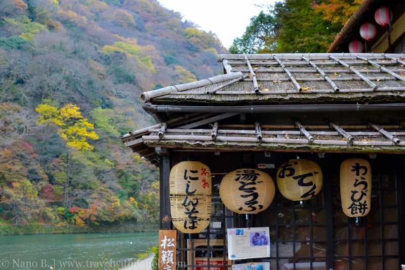 kyoto-autumn-leaves-2