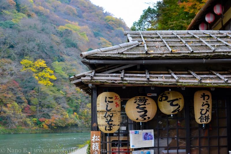 kyoto-autumn-leaves-2
