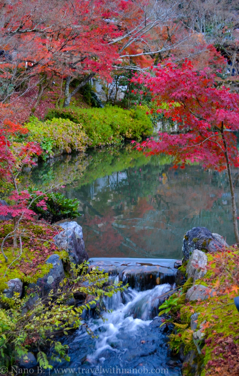 kyoto-autumn-leaves-25