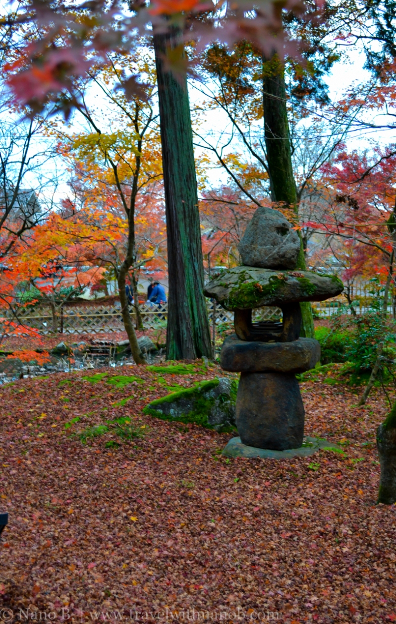 kyoto-autumn-leaves-26