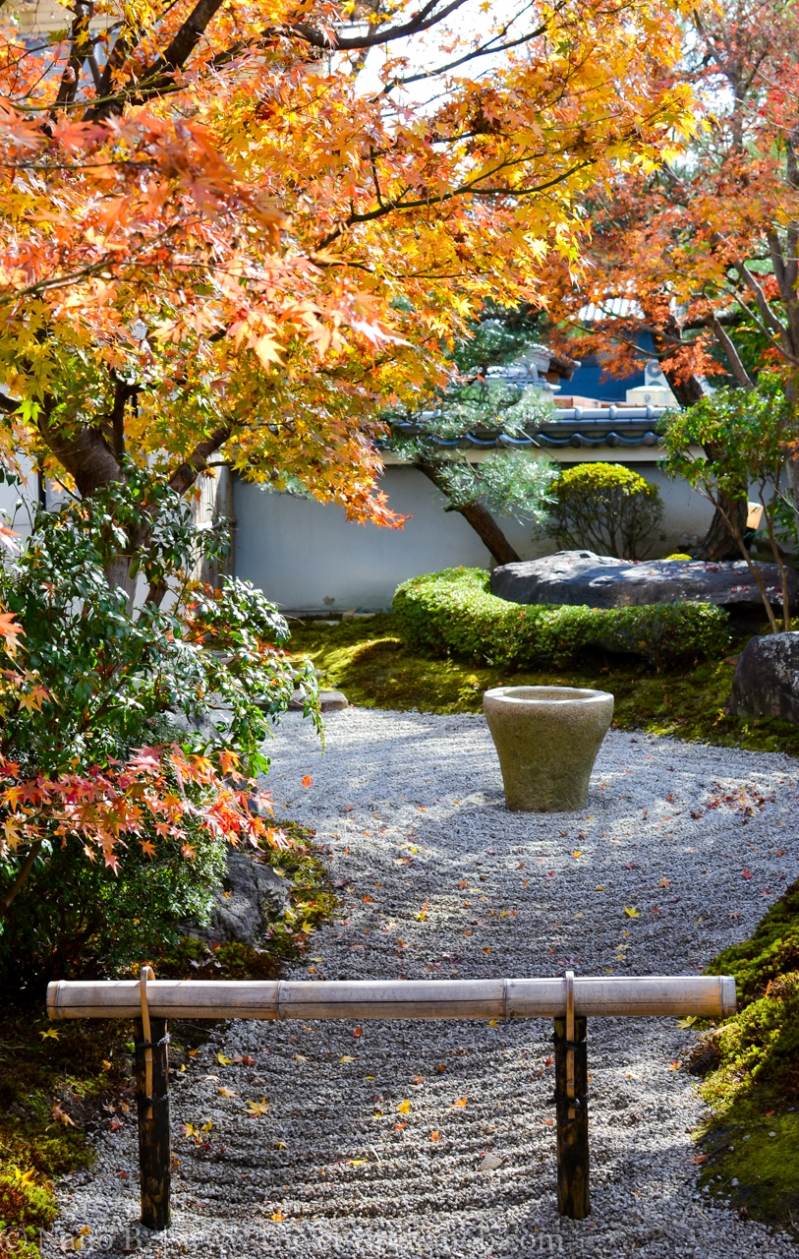 kyoto-autumn-leaves-3
