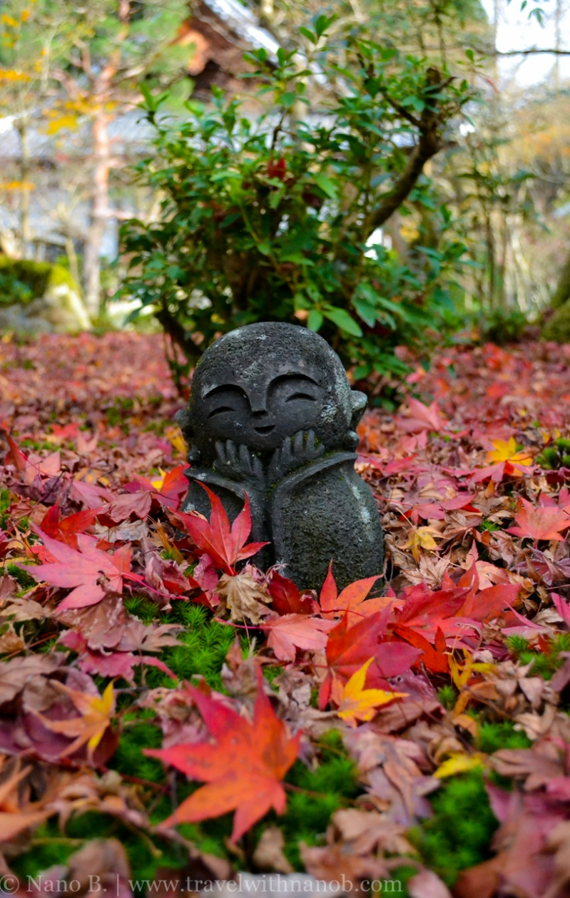 kyoto-autumn-leaves-30