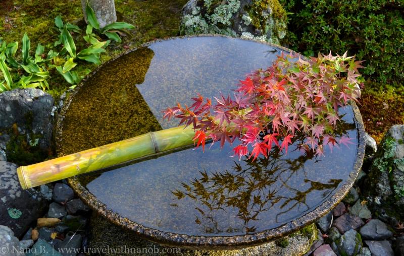 kyoto-autumn-leaves-31