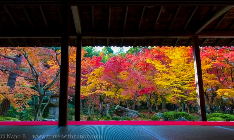 kyoto-autumn-leaves-33