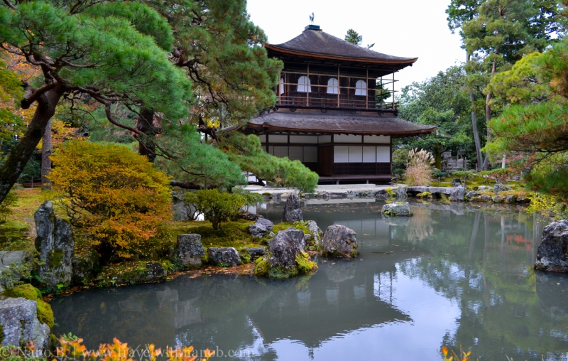 kyoto-autumn-leaves-43