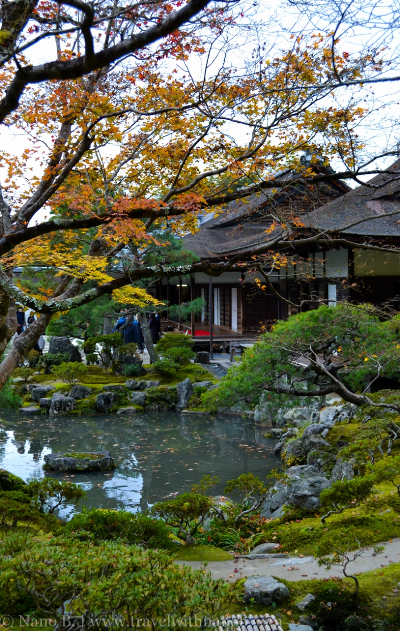 kyoto-autumn-leaves-46