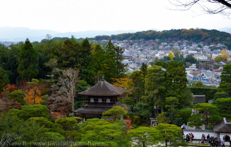 kyoto-autumn-leaves-48