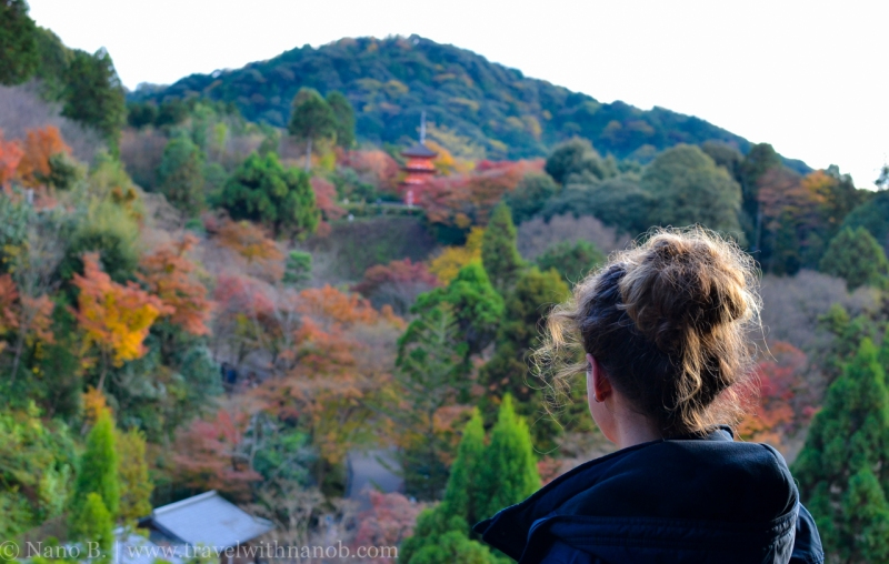 kyoto-autumn-leaves-56