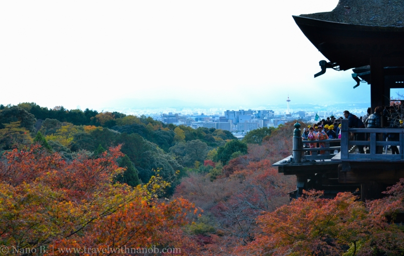 kyoto-autumn-leaves-57