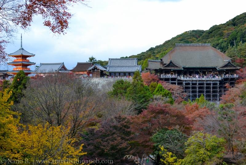 kyoto-autumn-leaves-59