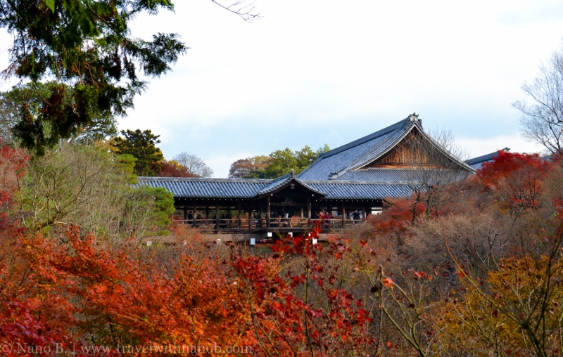 kyoto-autumn-leaves-72