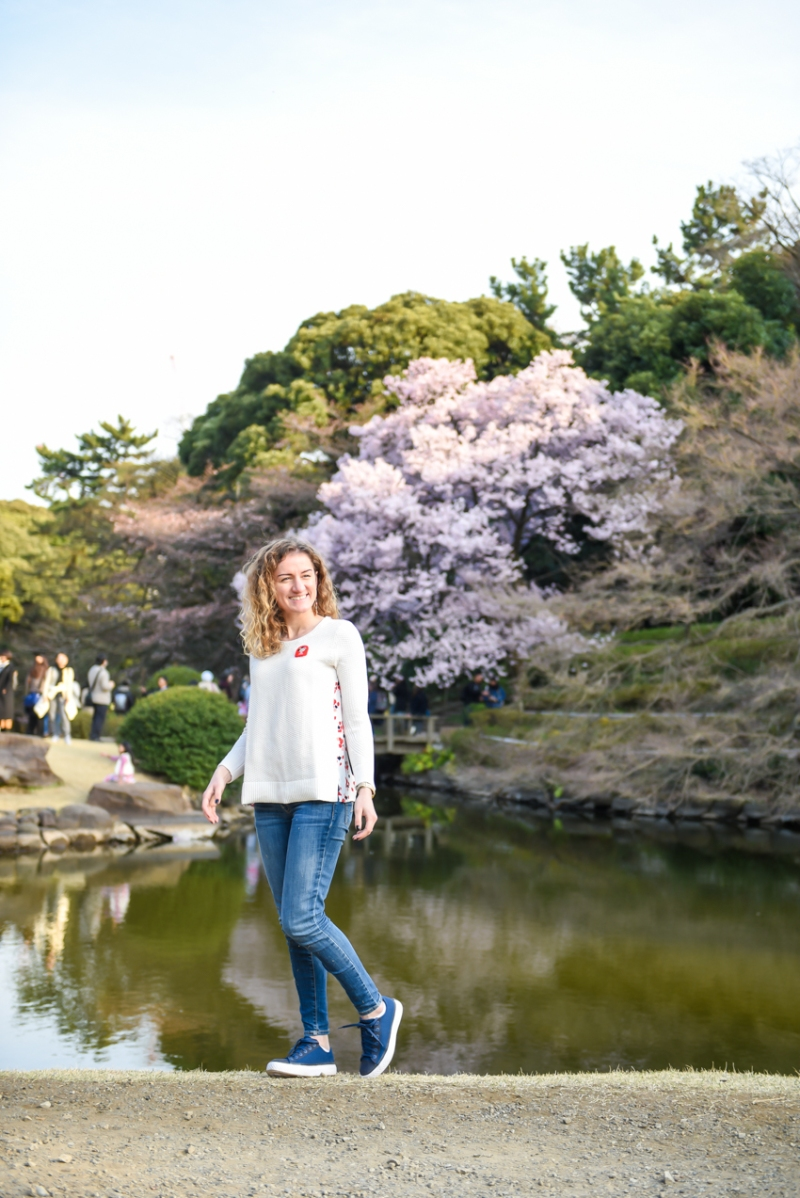 cherry-blossom-tokyo-39