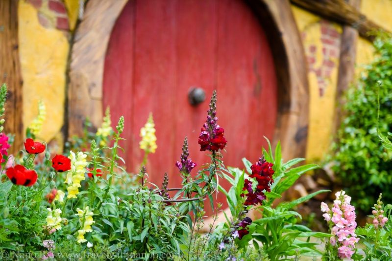 hobbiton-tour-auckland-new-zealand-36