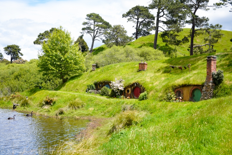 hobbiton-tour-auckland-new-zealand-53