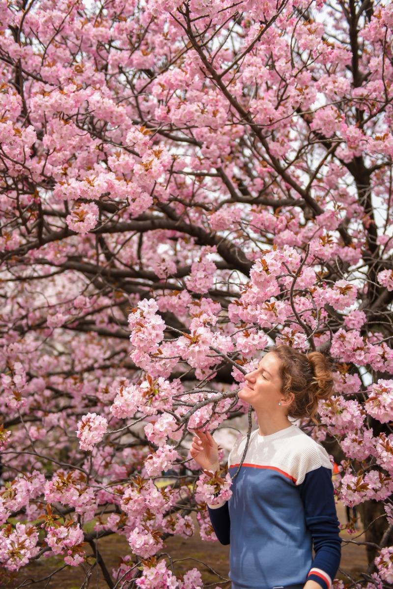 shinjuku-gyoen-garden-tokyo-25