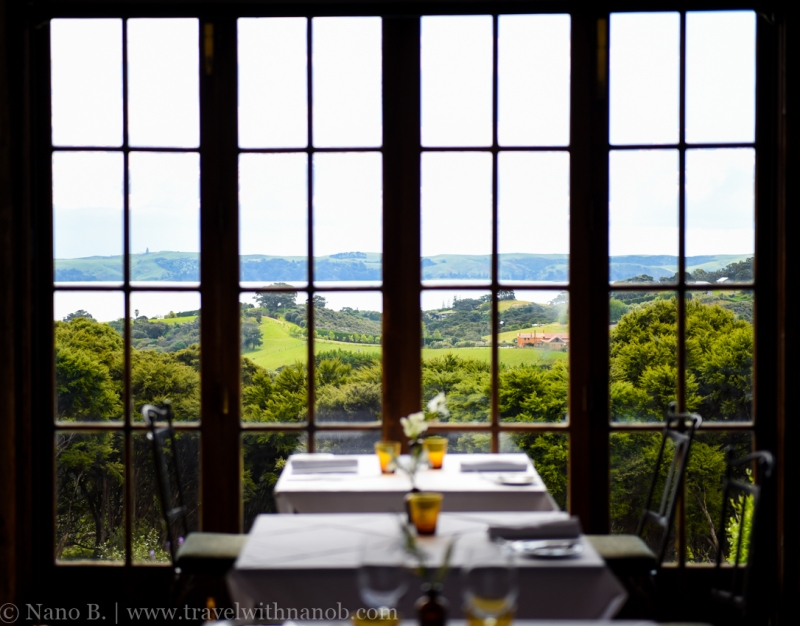 waiheke-island-wine-tour-39