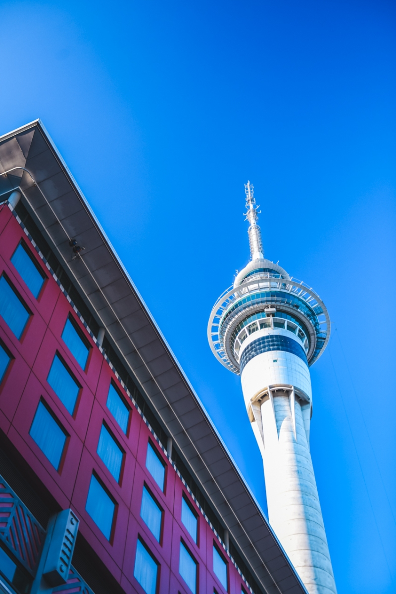auckland-things-to-do-41