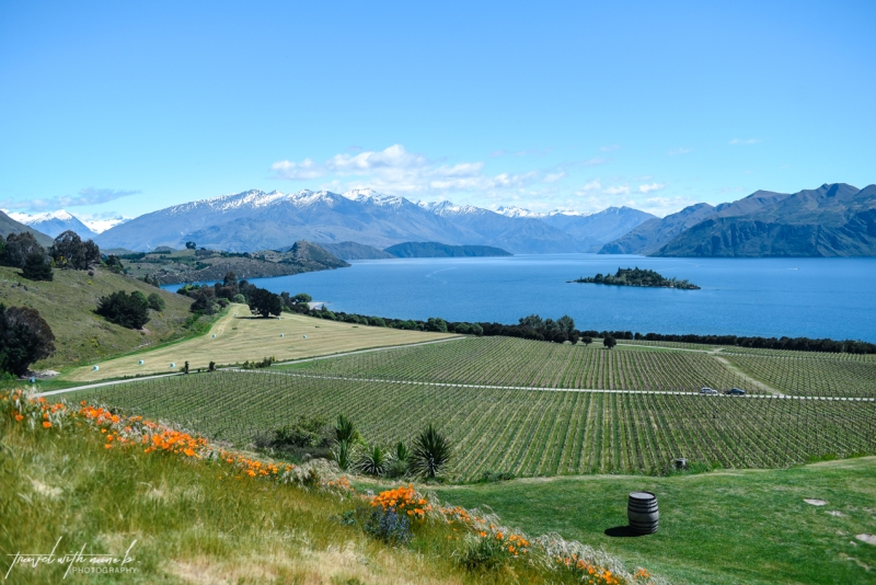queenstown-central-otago-wineries-34