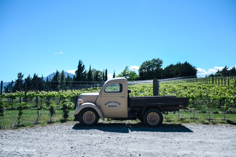 queenstown-central-otago-wineries-39