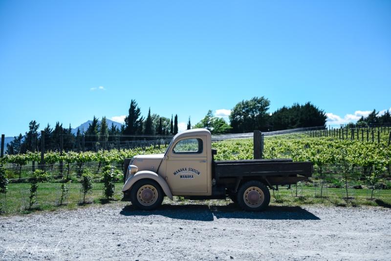 queenstown-central-otago-wineries-39