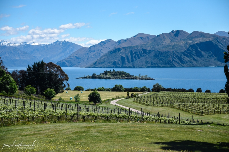 queenstown-central-otago-wineries-40