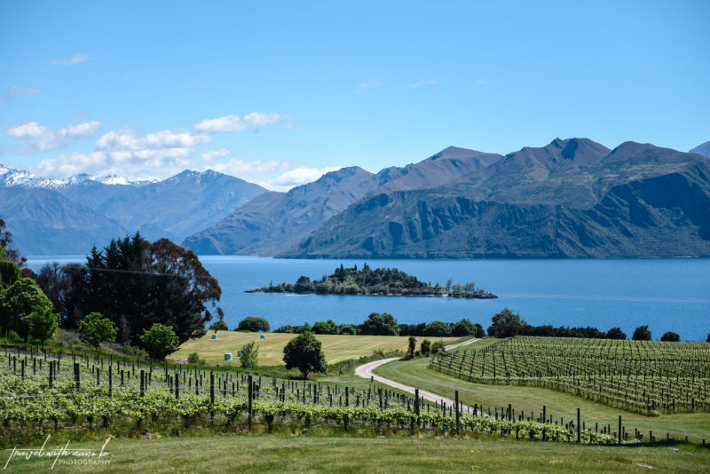 queenstown-central-otago-wineries-41
