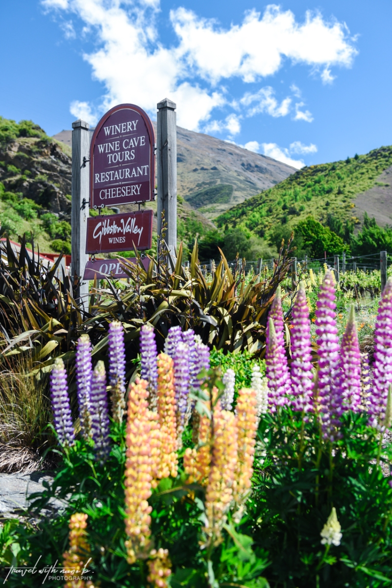 queenstown-central-otago-wineries-68