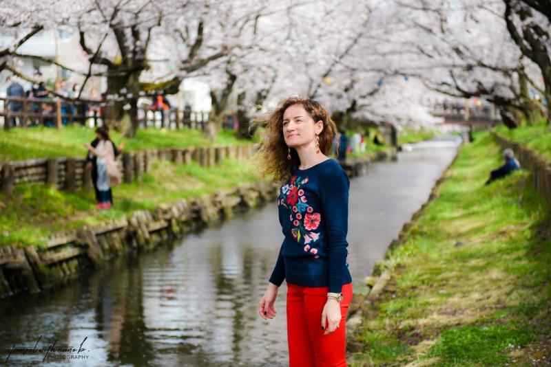 tokyo-best-cherry-blossom-spots-13