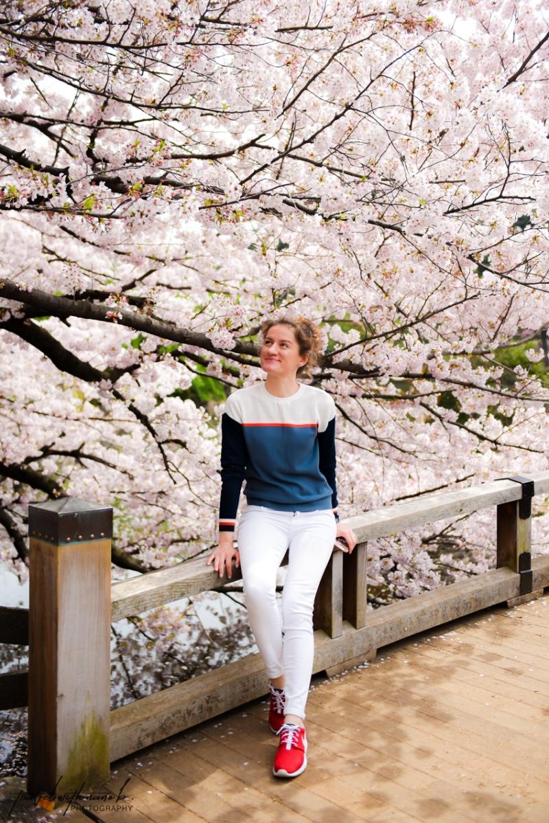 tokyo-best-cherry-blossom-spots-28