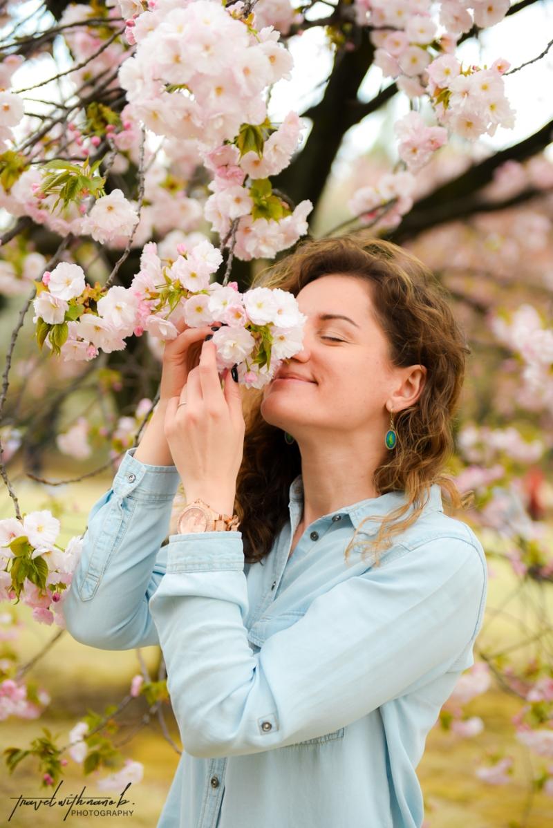 tokyo-best-cherry-blossom-spots-33