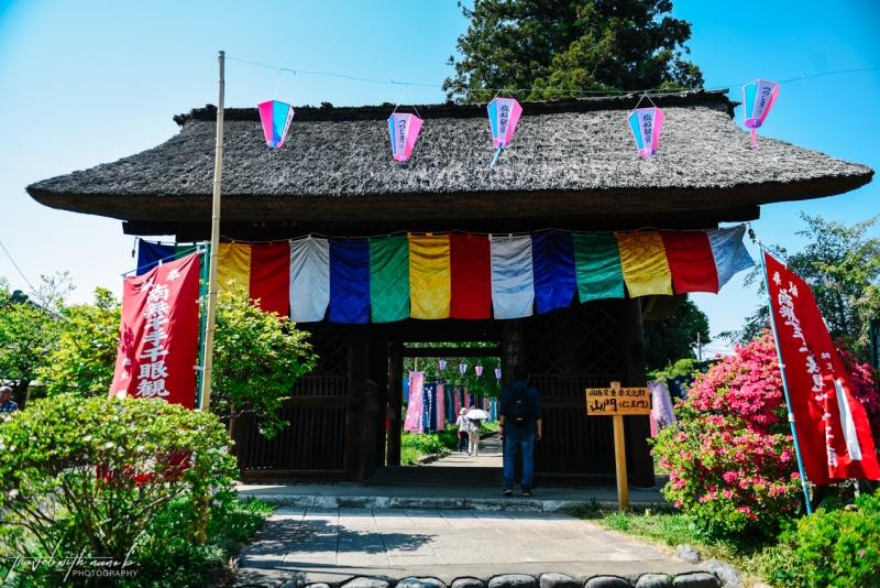 azalea-garden-shiofune-kannon-ji-temple-1