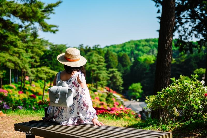 azalea-garden-shiofune-kannon-ji-temple-34