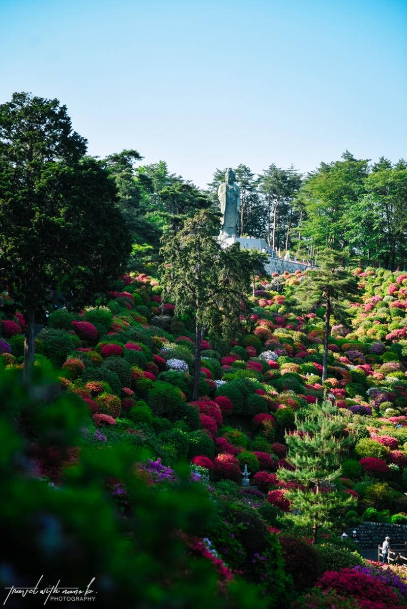 azalea-garden-shiofune-kannon-ji-temple-45
