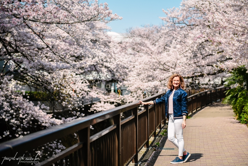 cherry-blossoms-tokyo-18
