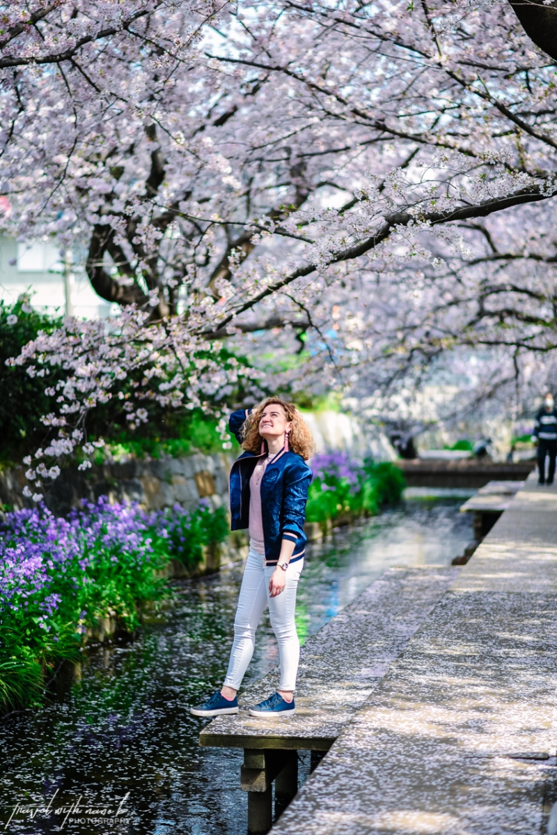 cherry-blossoms-tokyo-22