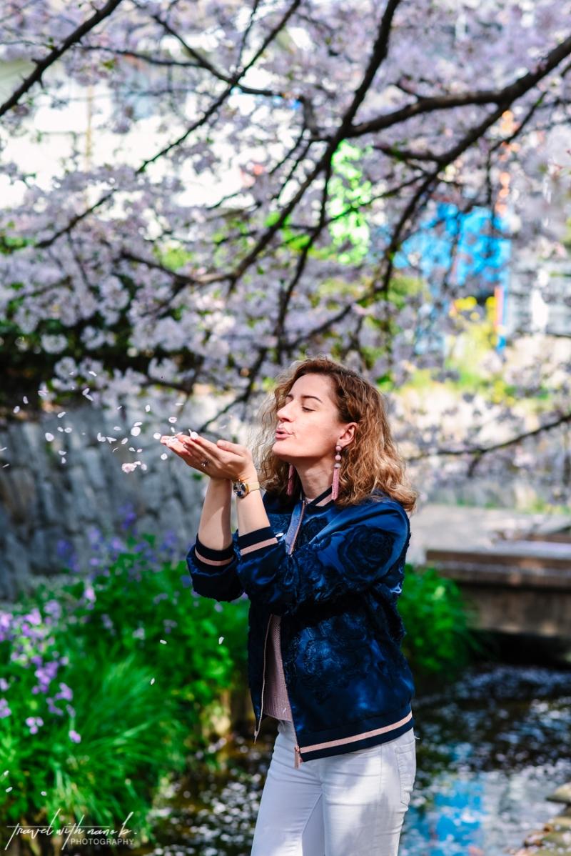 cherry-blossoms-tokyo-35