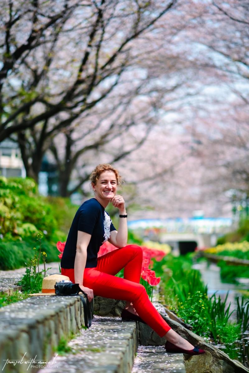 cherry-blossoms-yokohama-2
