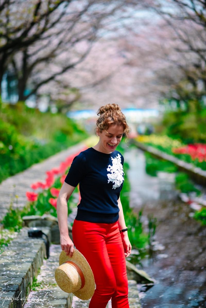 cherry-blossoms-yokohama-3
