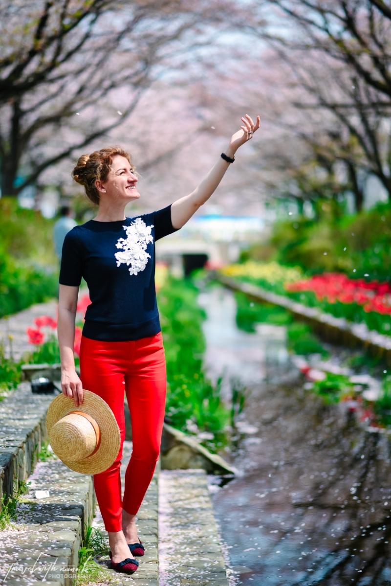 cherry-blossoms-yokohama-5