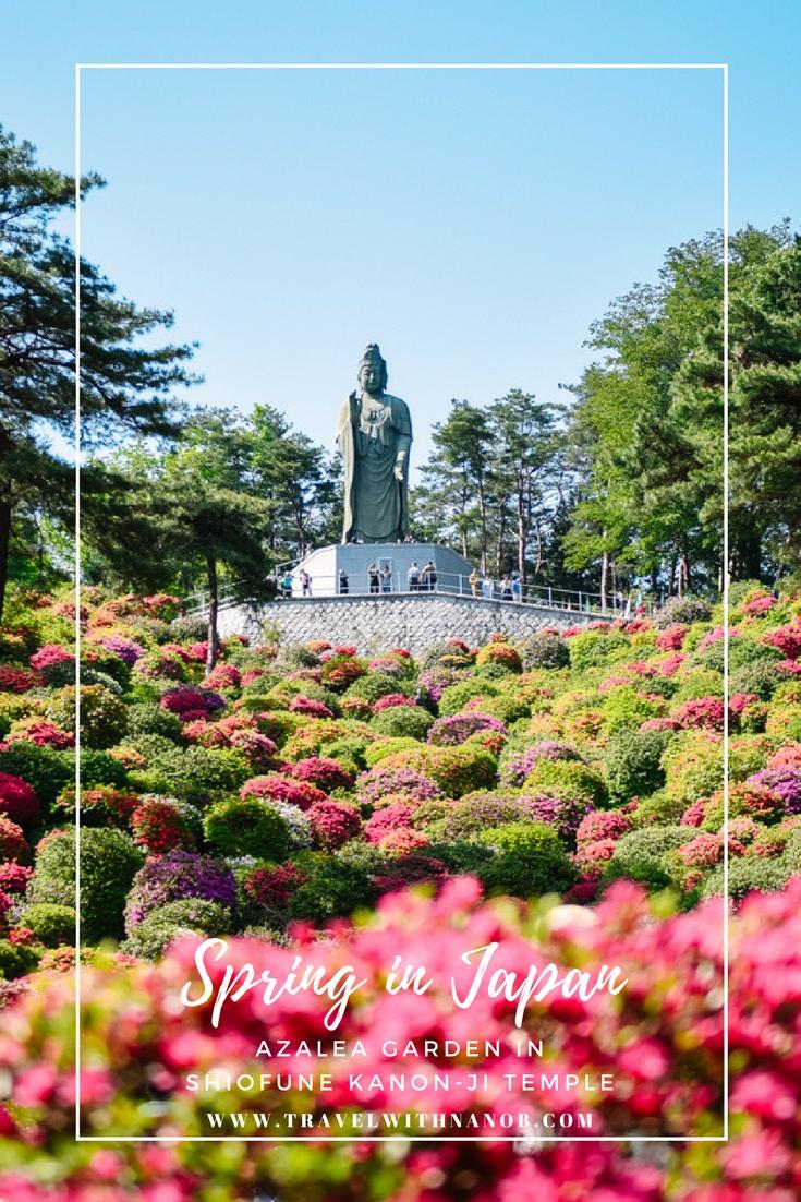 www.travelwithnanob.com (2)