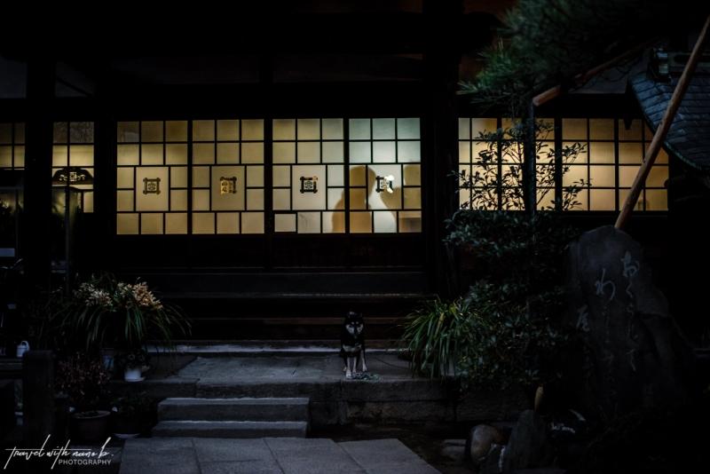 tokyo-yanesen-yanaka-things-to-do-19