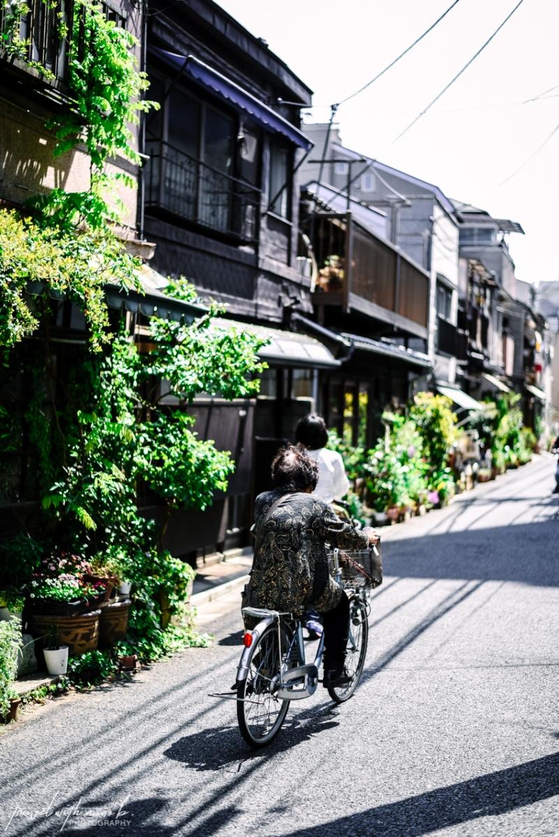 tokyo-yanesen-yanaka-things-to-do-56