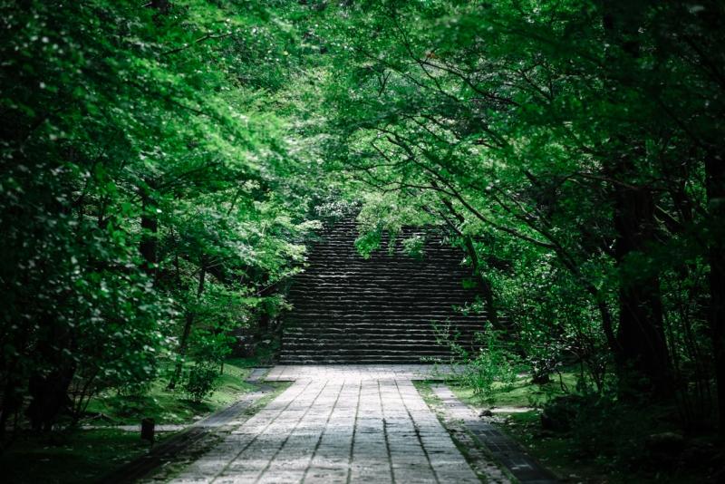visit-kochi-prefecture-shikoku-japan-23