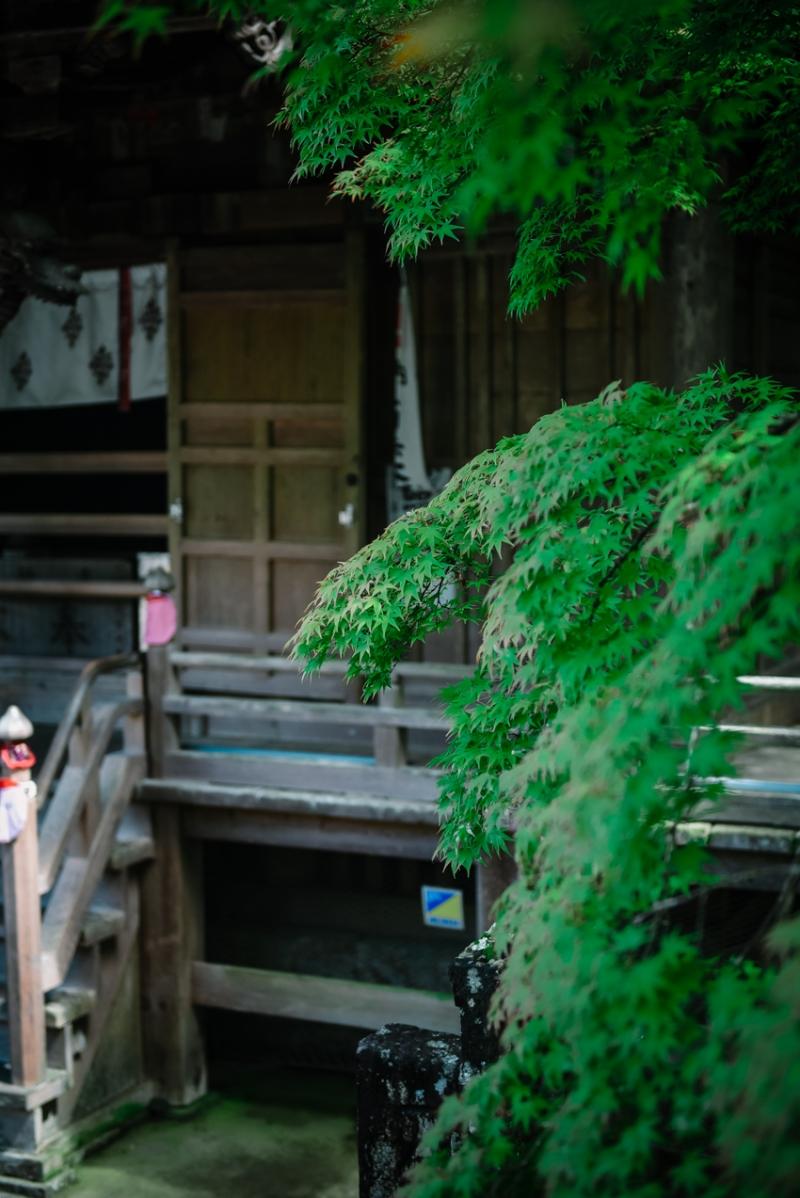 visit-kochi-prefecture-shikoku-japan-25