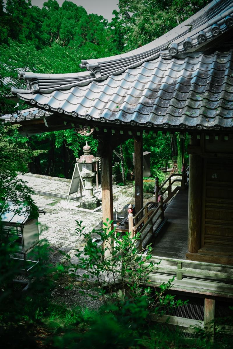visit-kochi-prefecture-shikoku-japan-26