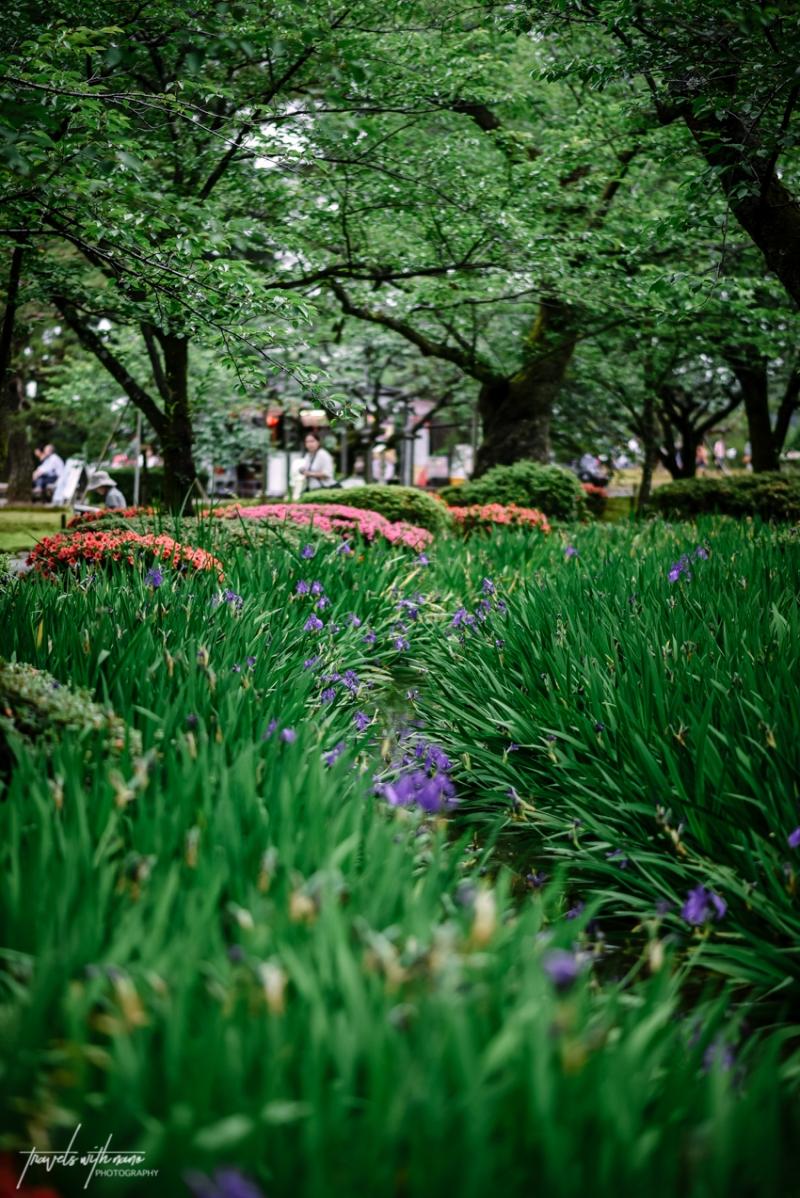 kanazawa-japan-itinerary-and-things-to-do-57