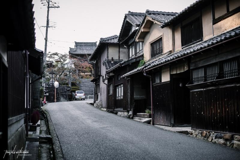 tango-chirimen-japanese-crepe-silk-japan-65