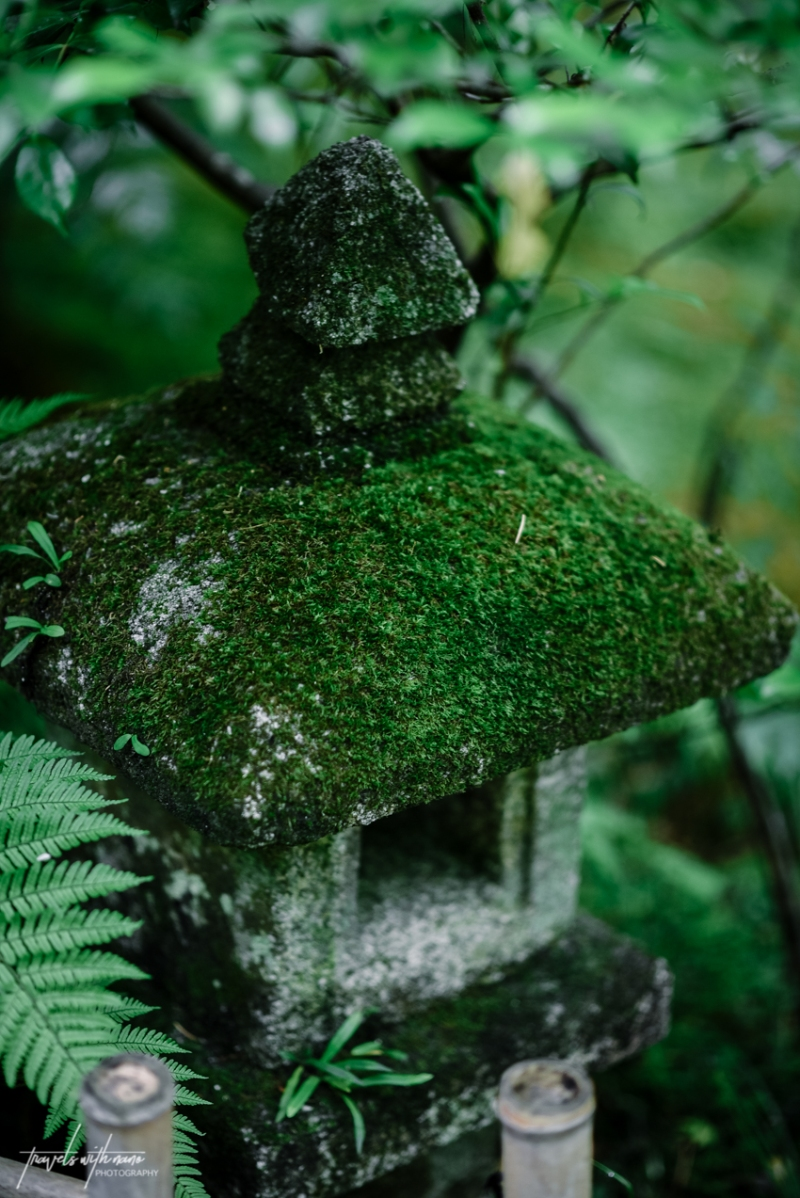 kyoto-secret-gardens-japan-23