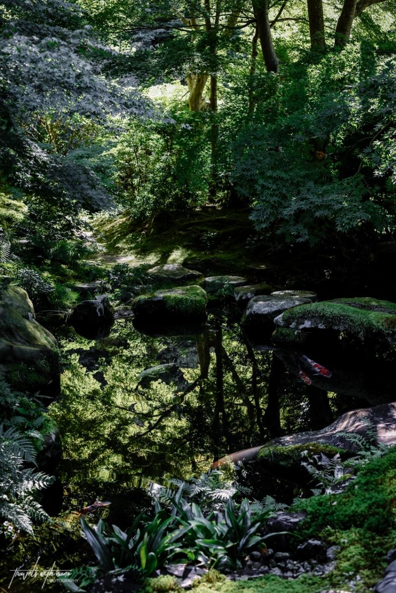kyoto-secret-gardens-japan-44